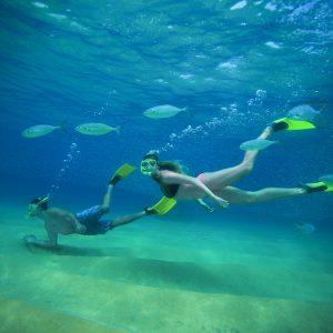 Snorkeling Los Cabos Beach Hopper Tour